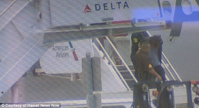 Turkish man on American Airlines flight from LA to Honolulu after he tried to break into cockpit