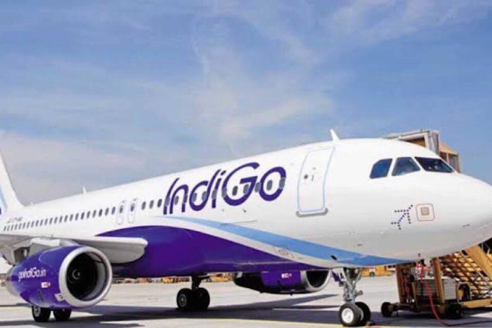 "IndiGo bags ""Passenger Choice Award"" at the APEX Asia awards 2019"